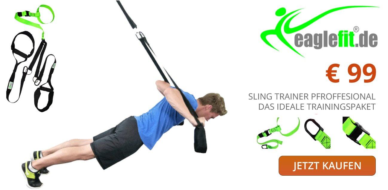 Sling trainer eaglefit online bestellen